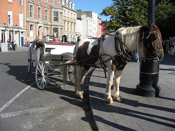 Pferdekutsche am St Stephens Green